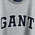 GANT Erkek Gri Melanj Grafik Baskılı T-Shirt